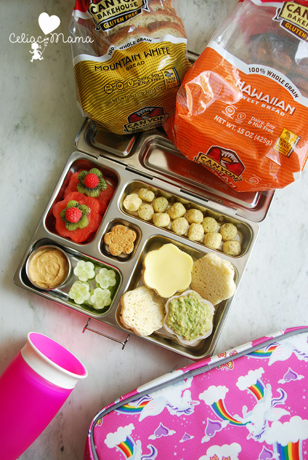 lunch-box-gluten-free-sandwiches